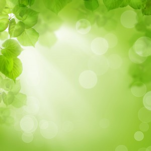 green_leave_back_ground